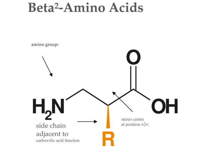 structure-beta2-amino-acids