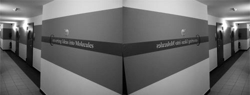 syntheselabor chiroblock
